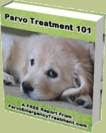 Download your free book about Parvo symptoms, treatment options and more
