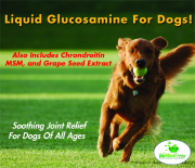 Liquid Glucosamine For Dogs by BeMedFree.com