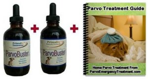 Contents of ParvoBuster Viral Smack-Down Kit
